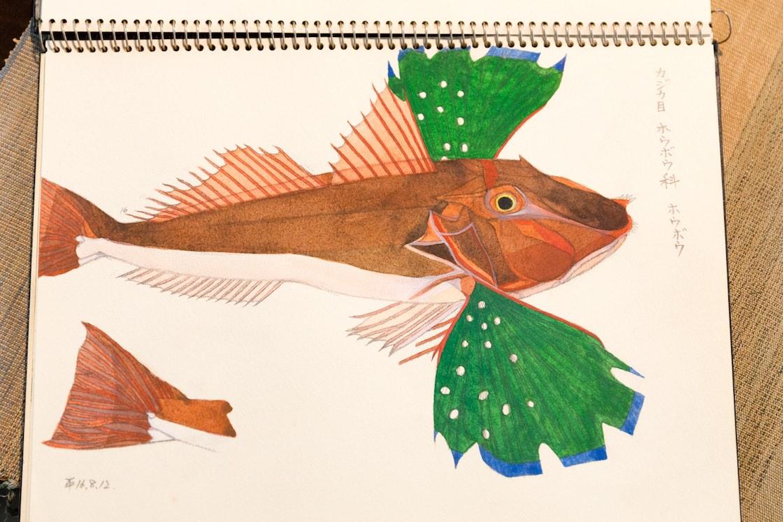 美しくデッサン、着彩が施された魚の図案。