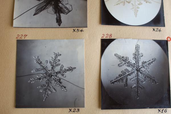 こちらは人工雪の結晶。よく見ると、毛のようなものが見えますね。人工雪はウサギの毛を芯に成長するのだそう。