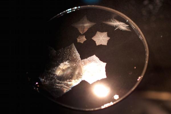 そのダイヤモンドダストを捕まえる実験。シャボン液を張った枠を冷凍庫に入れると、次々に結晶のような形が広がります。幻想的な瞬間です。
