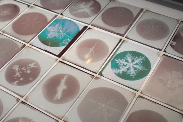 宇吉郎が撮影した天然雪の結晶の乾板(ガラス板に乳剤を塗ったもの)。フィルム代わりに使われたそう。