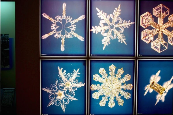 こちらは1964年から1994年にかけて、のべ160日間も冬の山小屋にこもり、雪の結晶のカラー写真を撮影したという吉田六郎氏のもの。自然がつくる色あいと形に感動します。