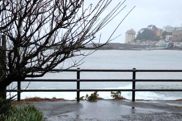 あいにく今日は海も真っ白です。。。
