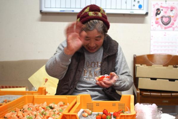 ちょっとシャイなおばあちゃん。朝の収穫からパック詰めまで大活躍です。