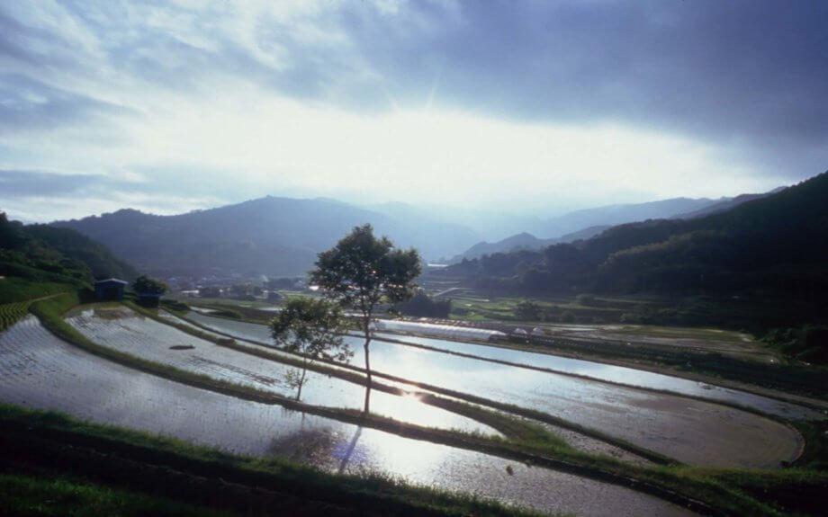 様々な時代の「奈良」が積み重なる産業と歴史ロマンの街