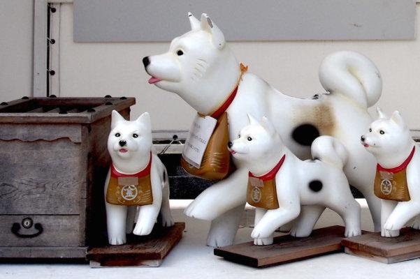 かつて当人に代わり飼い犬に「代参」させたというお話も。「こんぴら狗」と呼ばれていた。