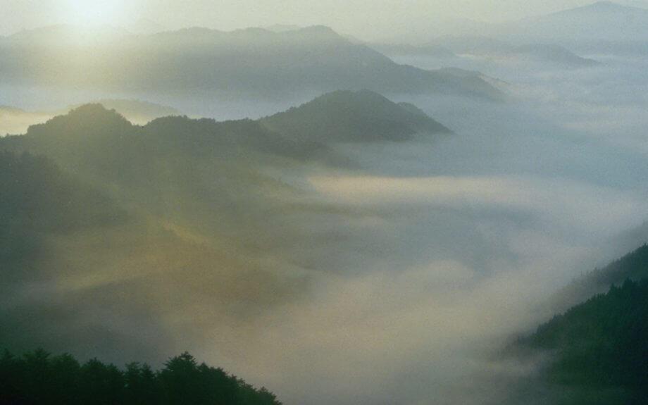 歴史的世界遺産のある、自然ゆたかな森林地