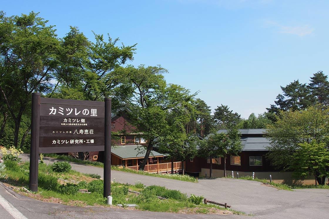 カミツレの里に到着!奥に見えるのはカミツレの宿「八寿恵荘」