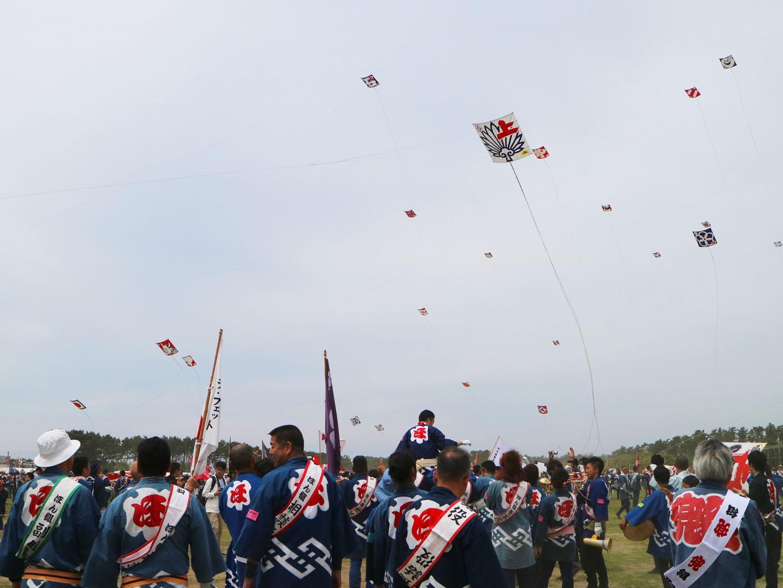 大凧が一斉に空を舞います。合戦には4〜6帖が最適とされますが、最大では10帖(約3.64m四方)のものも