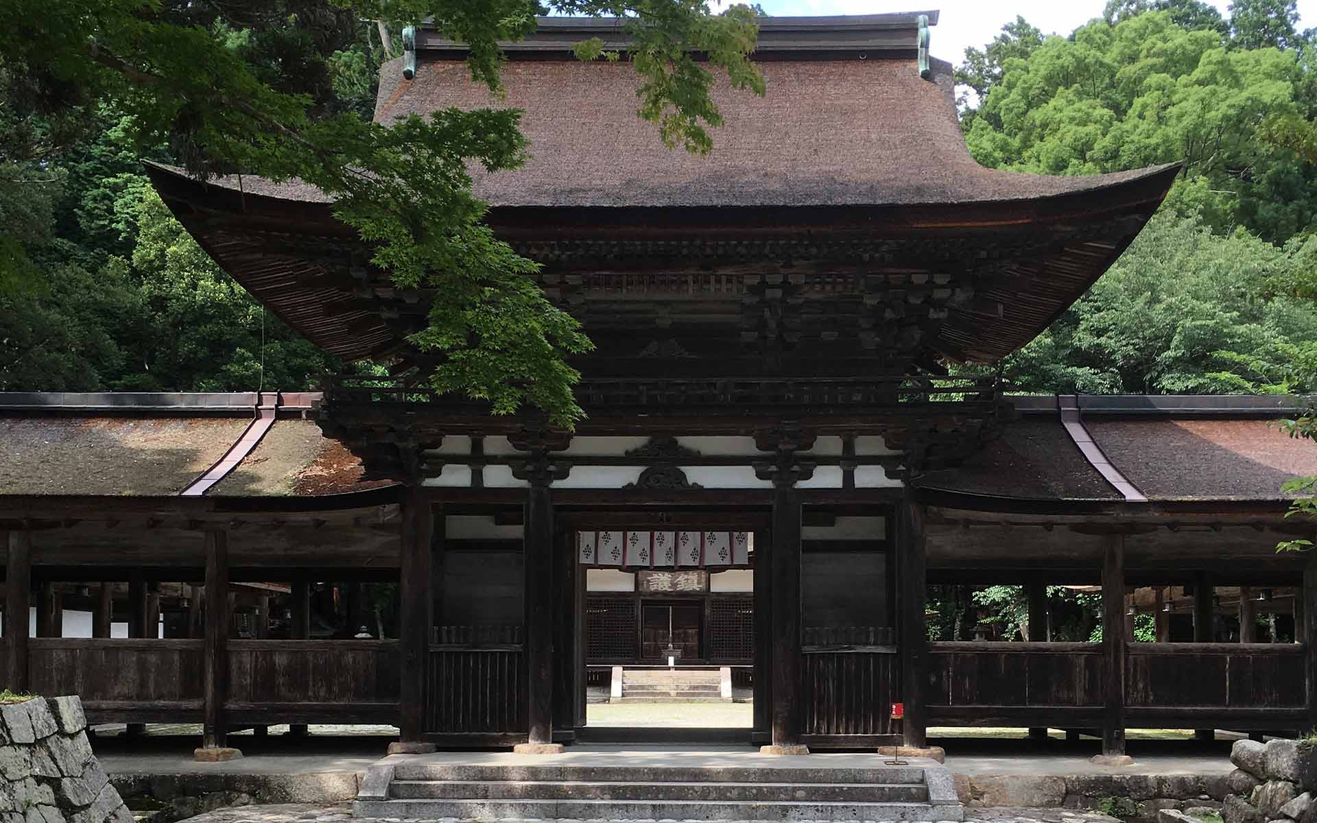 信楽「油日神社」プロの楽しみ方。アプローチから美しい名建築の魅力