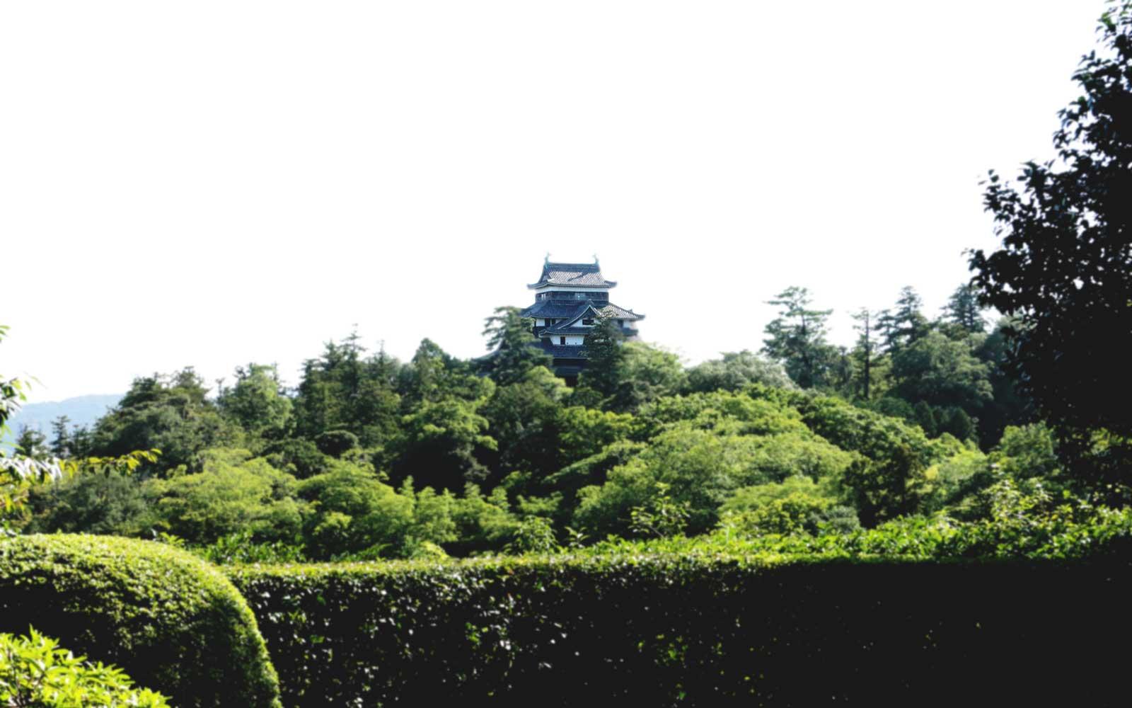 明々庵のある高台からのぞむ松江城