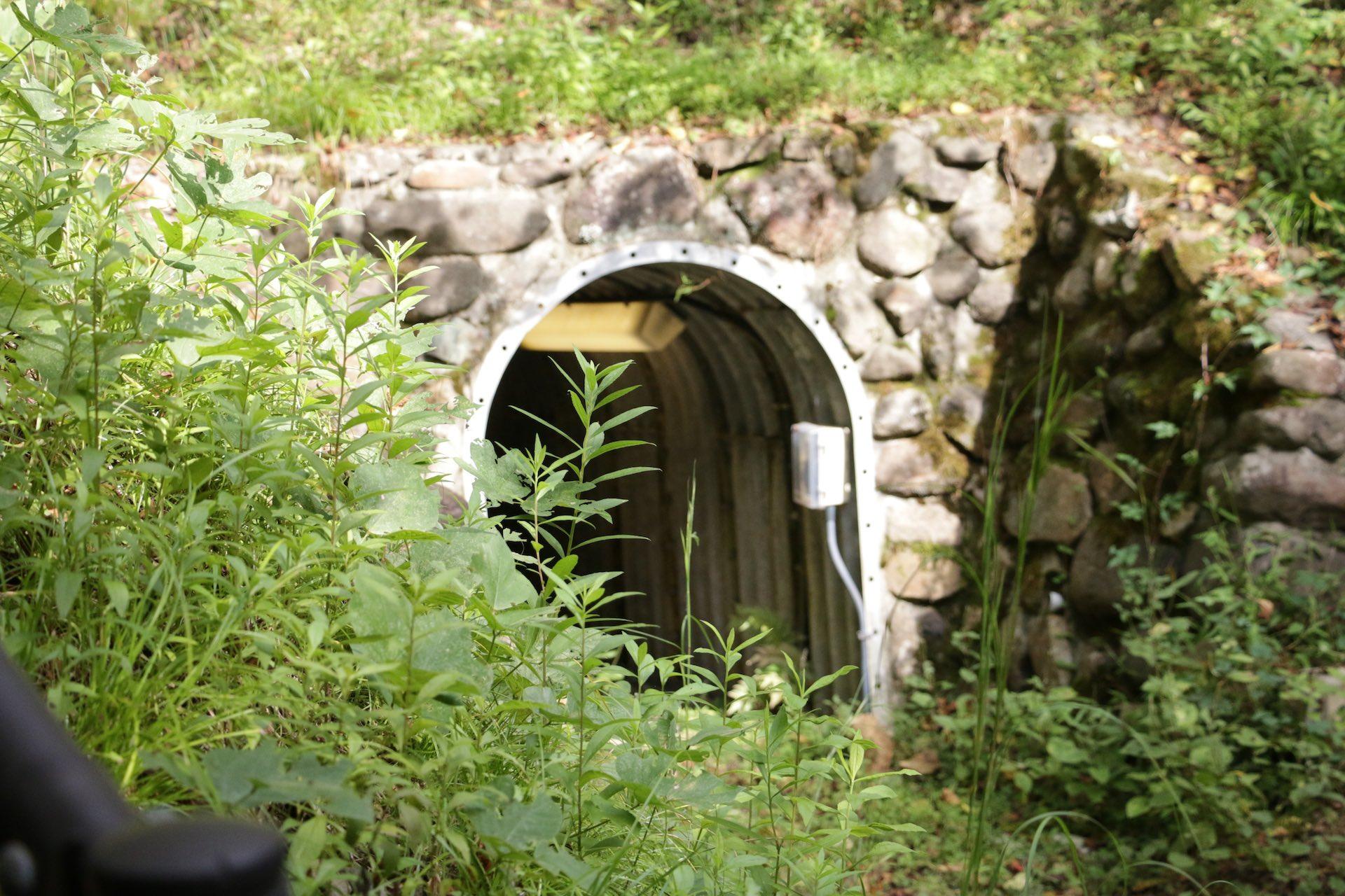 新宮さんの後ろをついていくと、何やらトンネルのような場所が見えてきました