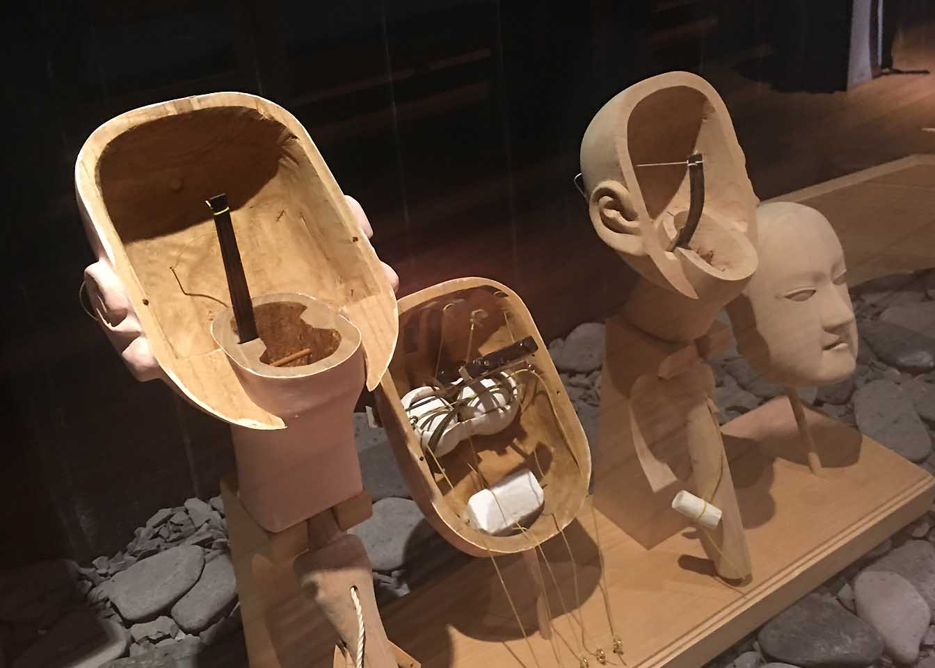 かしらを分解した模型。顔が彫りあがったところで耳の根元から2つに割り、中をくりぬいて仕掛けが作られています