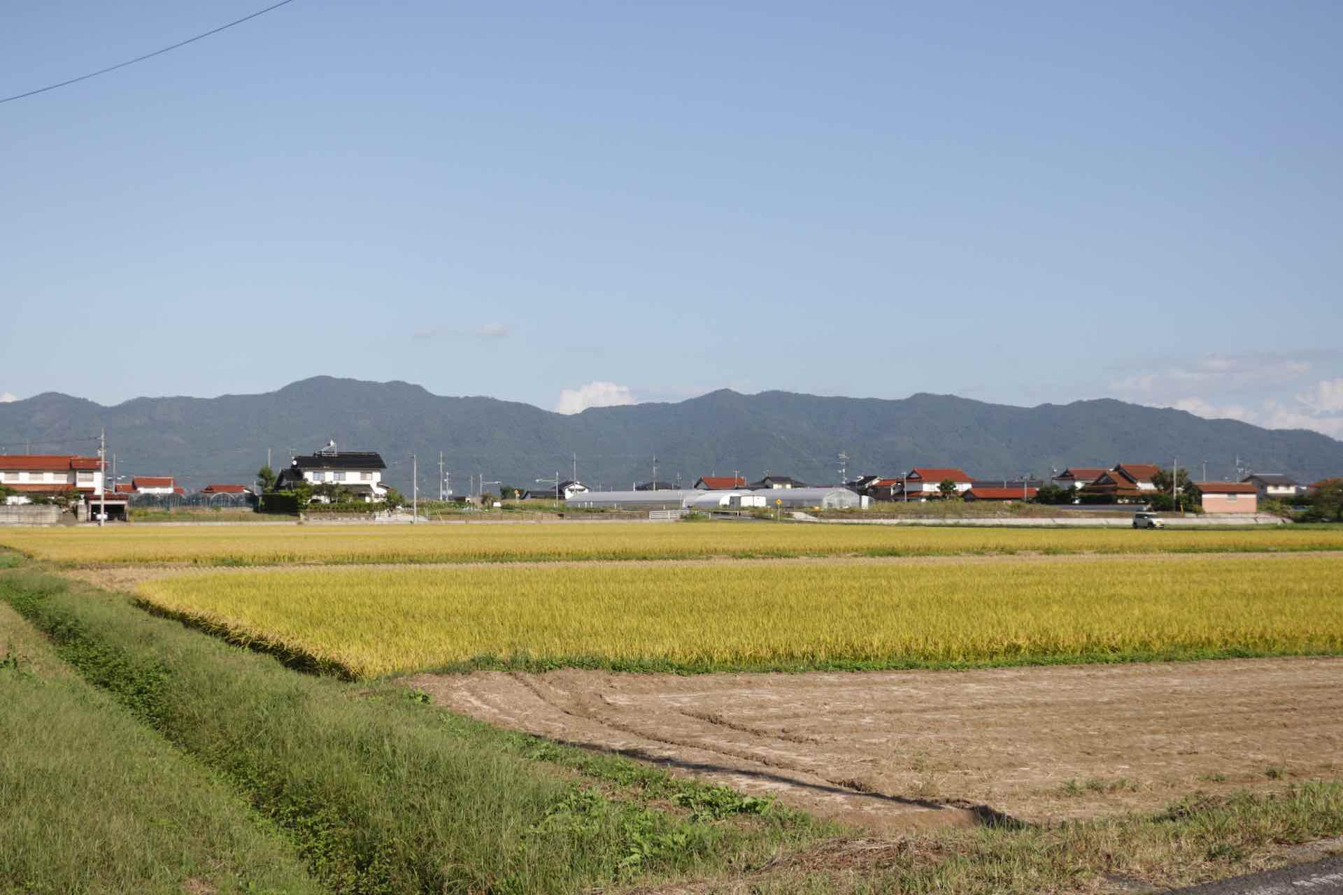 周りは広々と田園風景が広がります