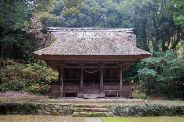綱神社本殿。周囲は少し霧がかかり、神聖な空気に満ちています