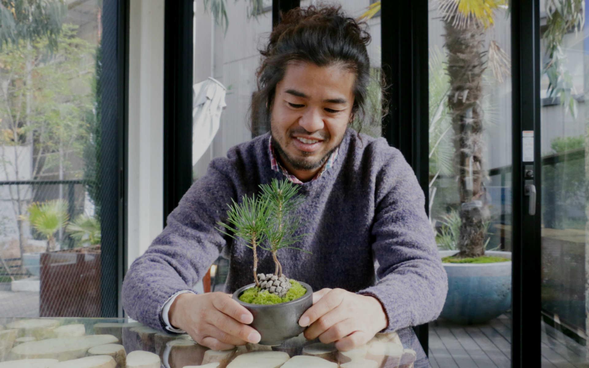 12月「松ぼっくり松」でハレの日の景色を飾る