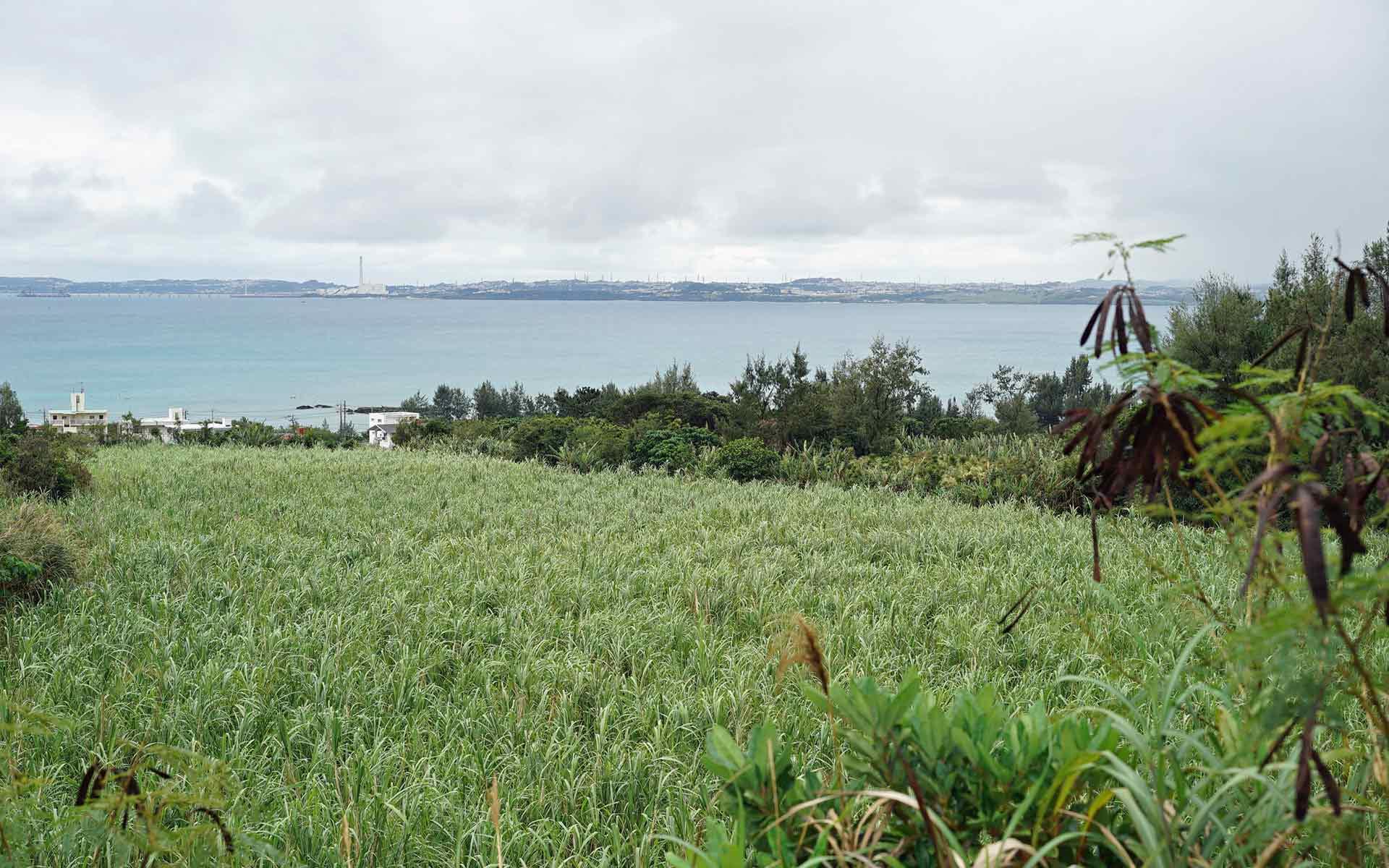 曇り空の沖縄の海