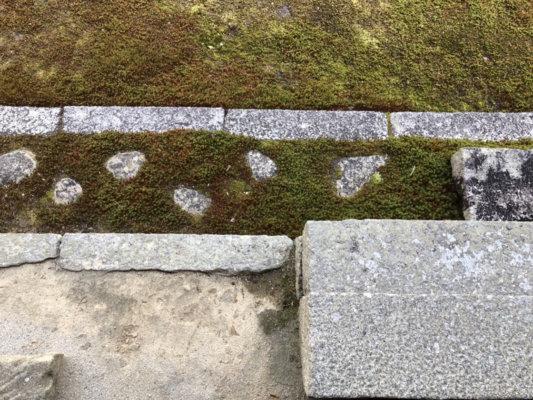圓通寺の庭園の敷石