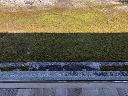 圓通寺の庭園の芝生
