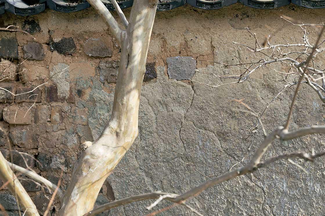 漆喰が残っているトンバイ塀
