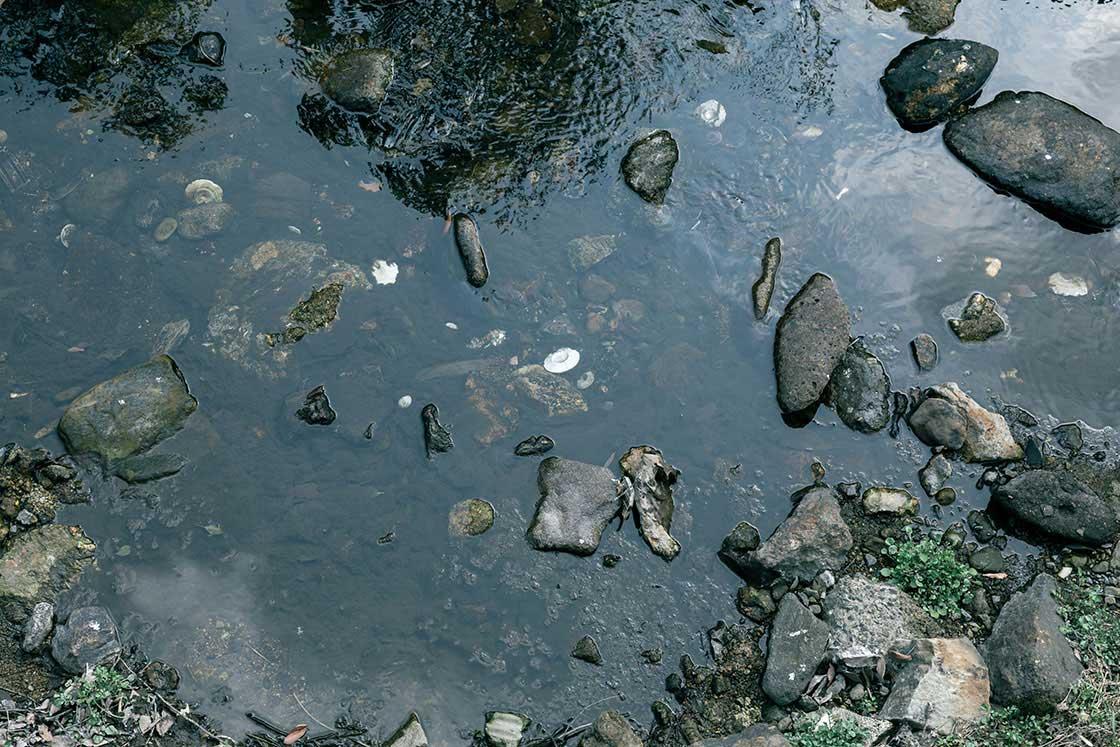 有田川。白い皿のようなものがハマ。かつてこの辺りに窯元があったことがわかる