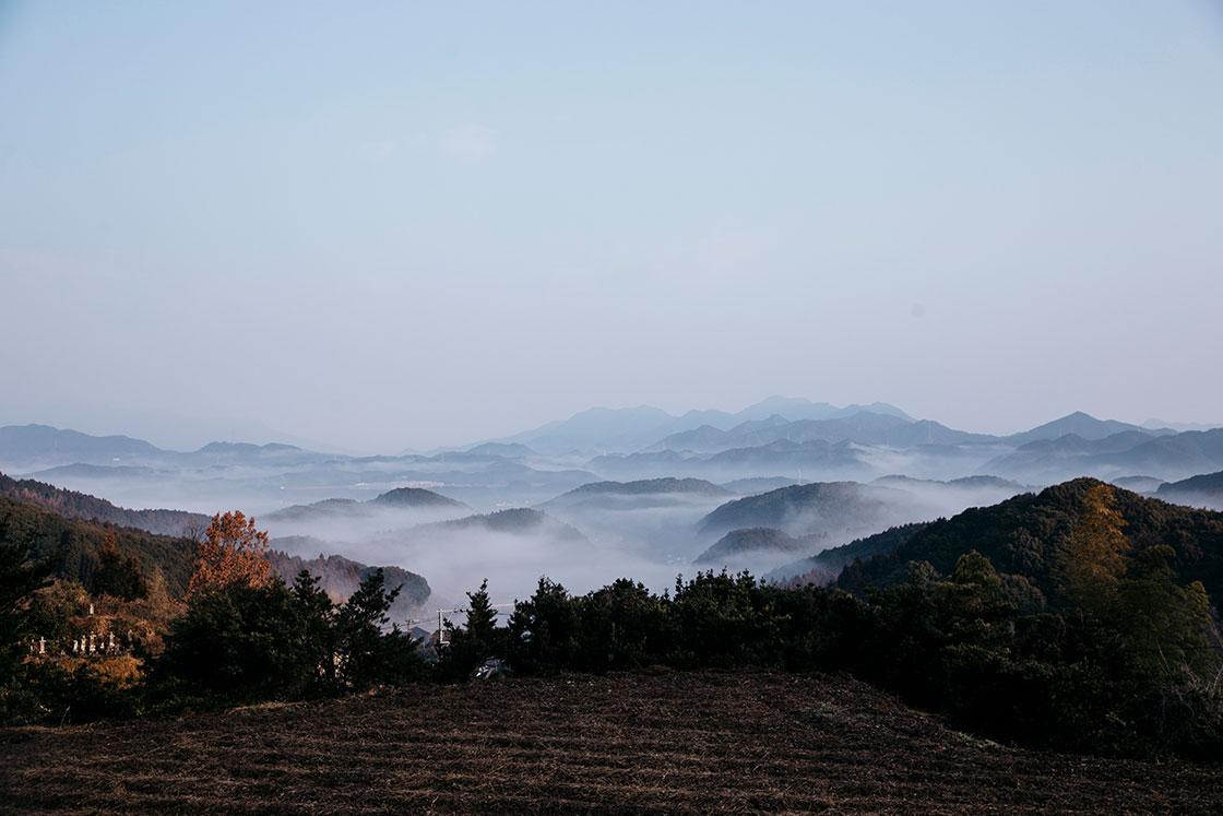 長崎県波佐見町の造園会社「西海園芸」の庭師、加藤陽介さんが所有する山の頂上からの風景