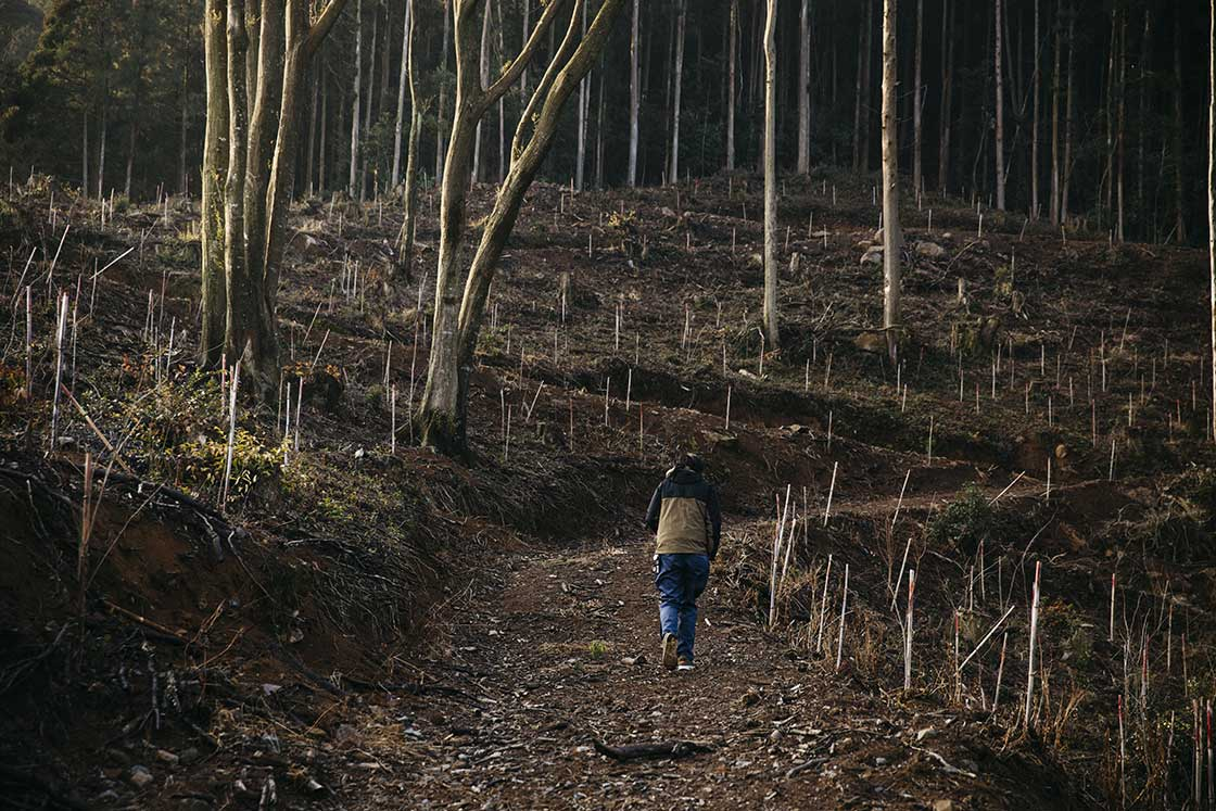 長崎県波佐見町の造園会社「西海園芸」の庭師、加藤陽介さんが「究極の庭」と表現する山