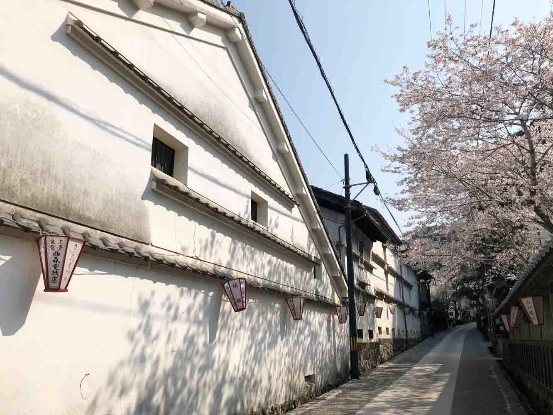 佐川町は江戸時代に城下町として栄え、主に商人が居を構えた地域。伝統的な商家住宅や酒蔵が今も残っています