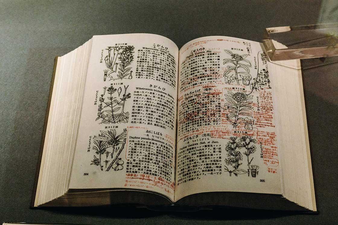 初版の植物図鑑に書き込まれた膨大な赤字