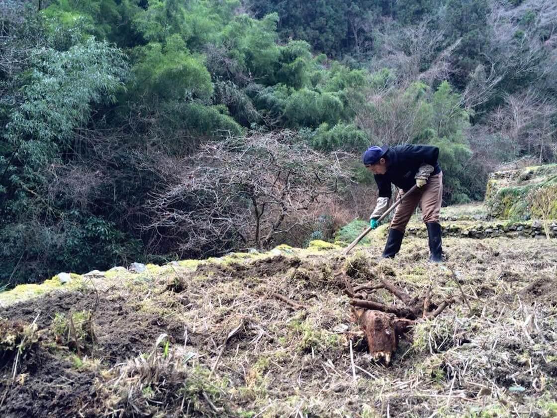 土佐和紙の産地で畑作業をするアーティスト