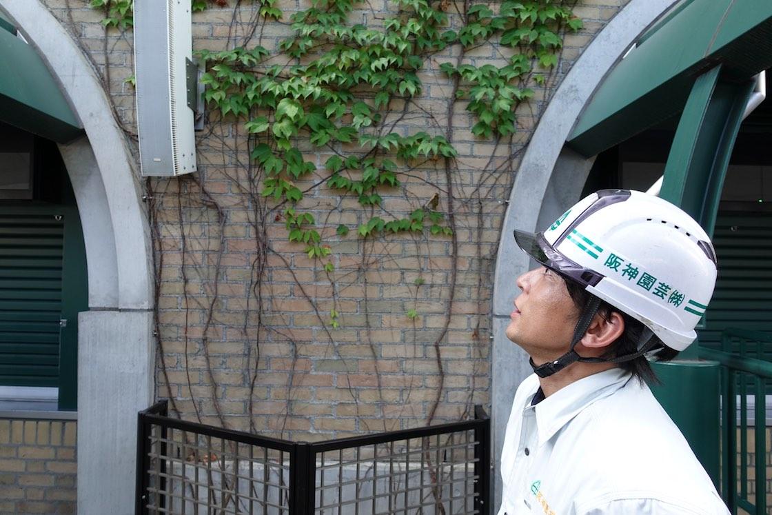 阪神園芸の松本さん