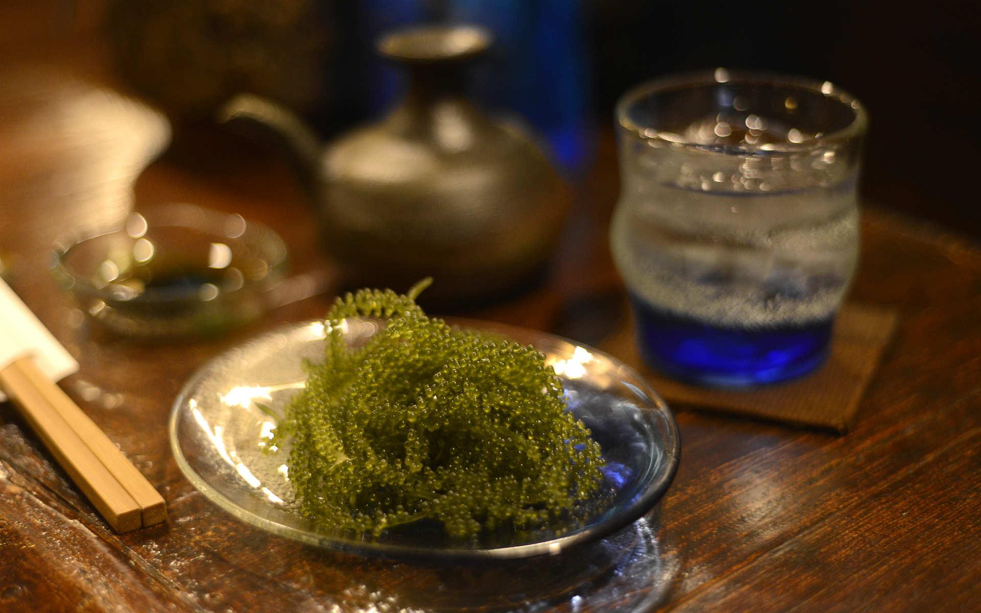 大人の沖縄居酒屋「花ずみ」で未知との遭遇。海ぶどうが水槽を舞う