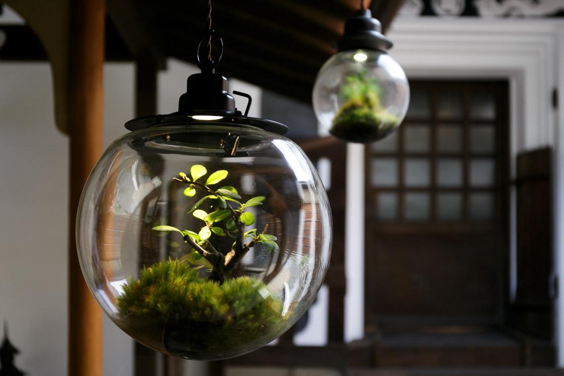 球体ガラスの中に盆栽を閉じ込めた[Re:planter]の作品「Space Colony」