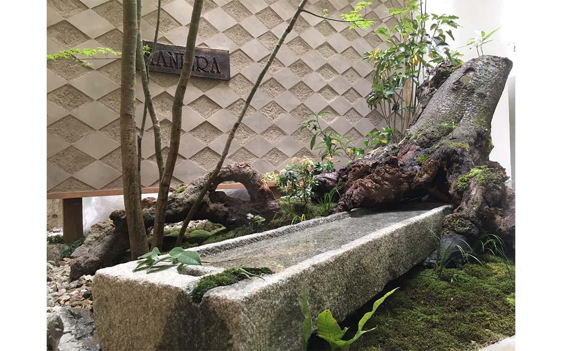 樹歴100年以上の山桜の根に水鉢を入れ込み、太い根が石を引き上げる一瞬をイメージ