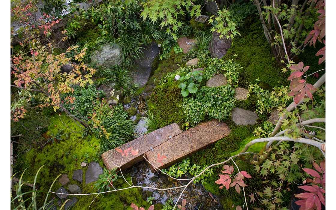 個人宅の庭。猪鼻さん作庭(写真提供:猪鼻一帆)
