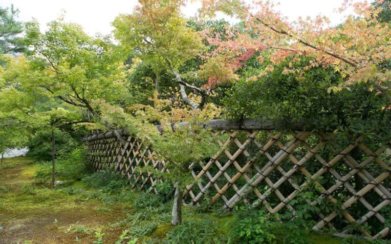 京都・建仁寺の竹垣