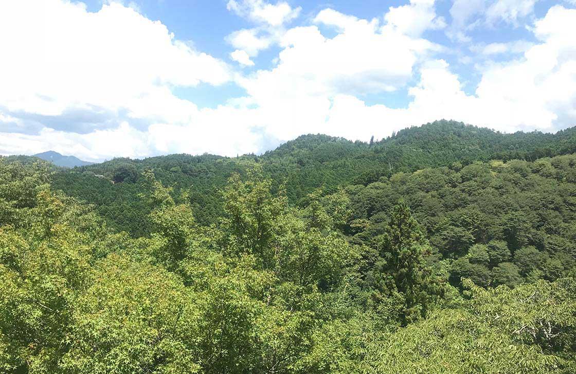 奈良県吉野の風景