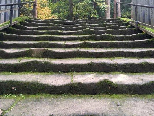 階段のアップ