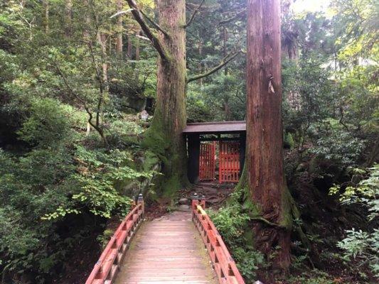 山の中にある架け橋