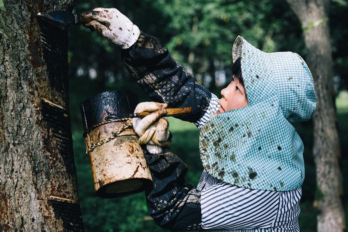話をしながらも、長島さんは樹から目を離さない