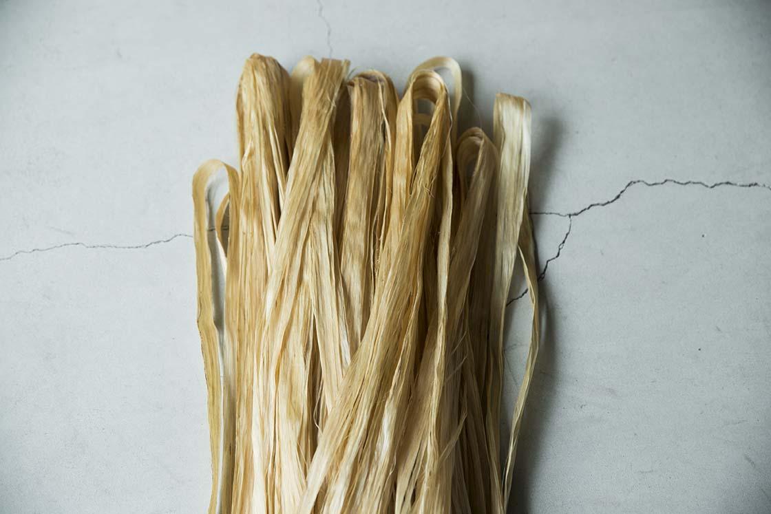 大麻草の茎の表皮を手間暇かけて精製した繊維、精麻(せいま)
