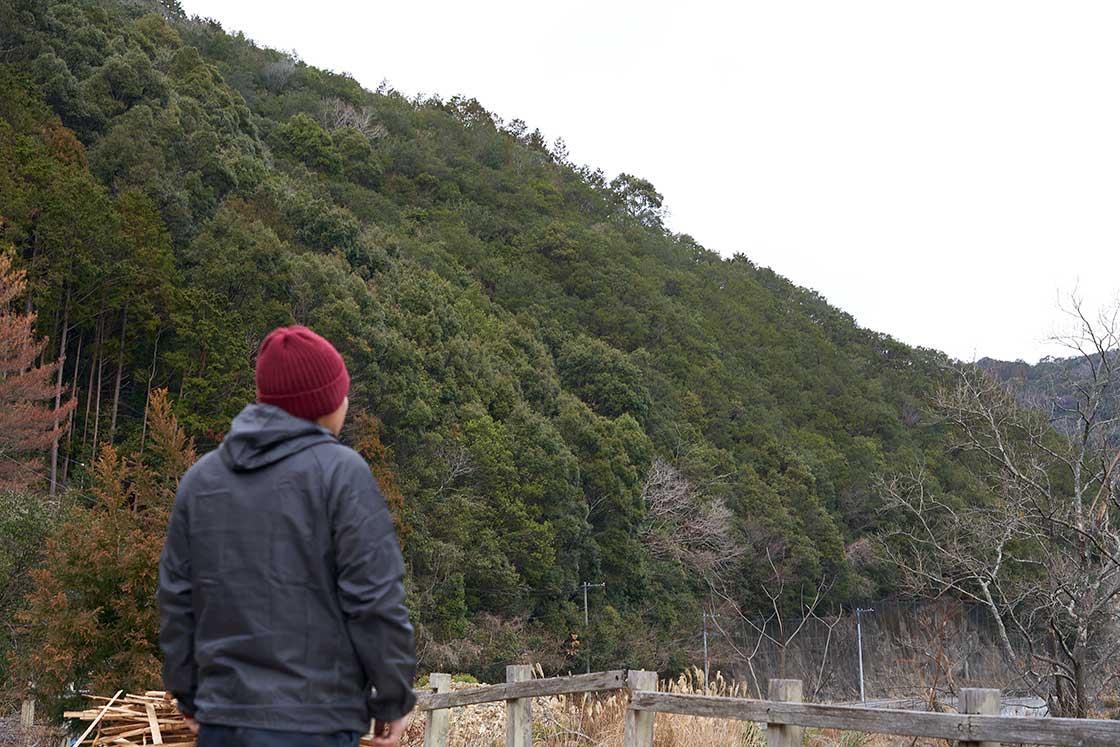 山を眺めると、ウバメガシが集まっている部分はひと目で分かるんだとか