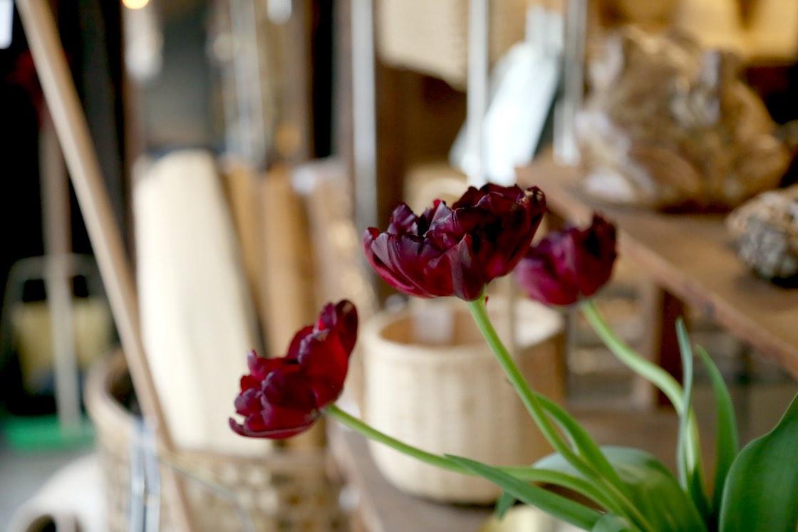 季節の花々がさりげなくお店を彩ります