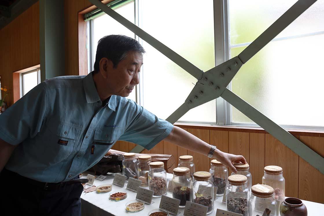 吉井さんをはじめ、香司の多くが天然素材による線香づくりに力を入れています