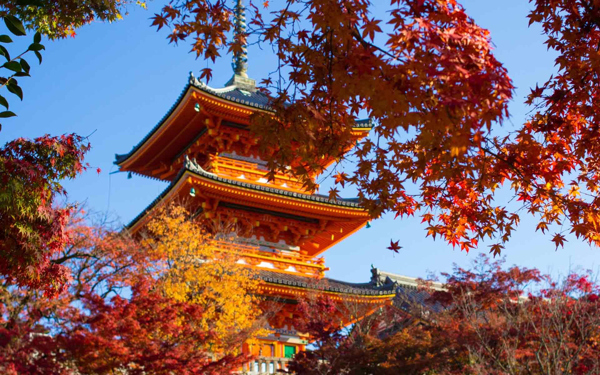 清水寺 © gandenクリエイティブ・コモンズ・ライセンス(表示4.0 国際)