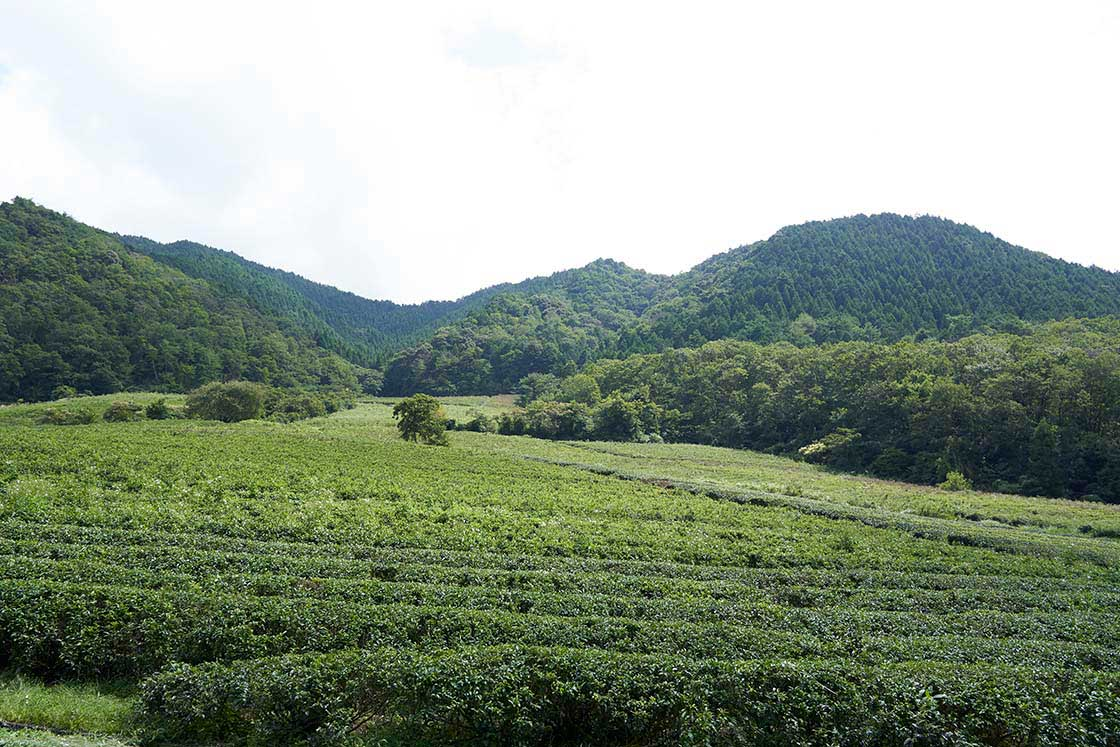 兵庫県神河町の風景