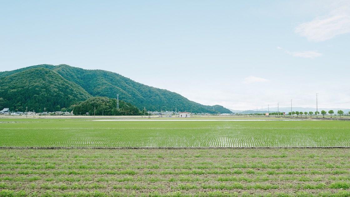 ataW周辺の風景