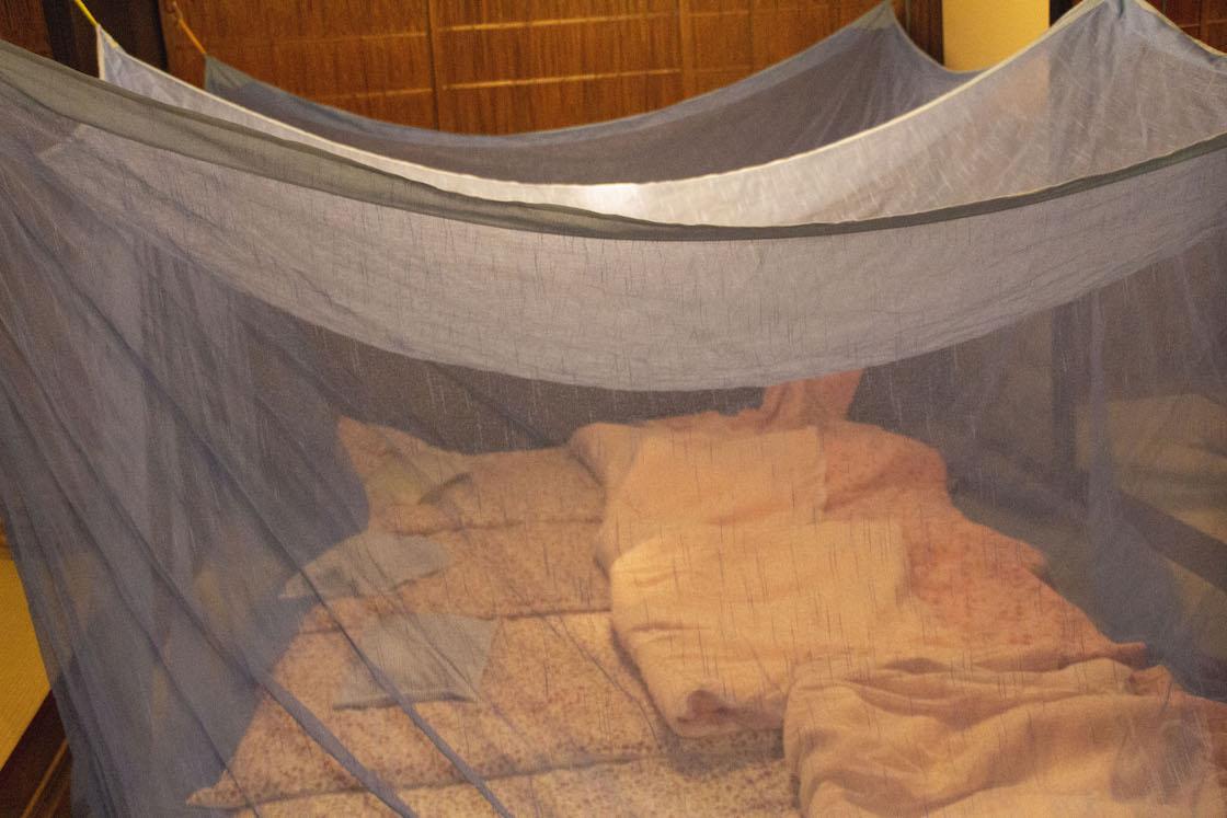 蚊帳が吊られた寝室